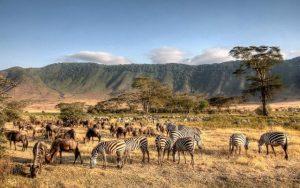 Бюджетная страна Танзания