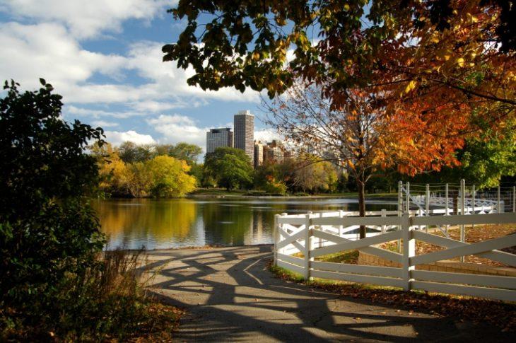 Линкольн-парк в Чикаго