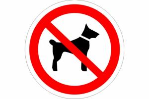 В какие страны запрещен ввоз животных