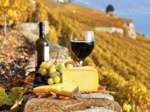 Итальянские сыры и вино