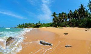 Шри-Ланка для пляжного отдыха
