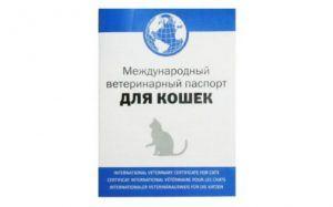 Ветеринарный паспорт на кота